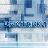 Выставки в Багаевском