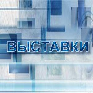Выставки Багаевского